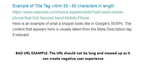 Meta Tag Example
